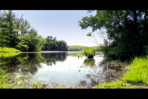 Lake Waban, Wellesley College photo by Soe Lin